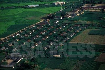 両江道の協同農場。住宅の周りに生い茂っているのは、カボチャや豆、キュウリ、トウモロコシなど、自留地に自己消費分として植えられた作物であったが、農場での共同耕作よりずっと生産性が高かった。農民市場に売って現金化できたからである。(1993年7月 石丸次郎撮影)