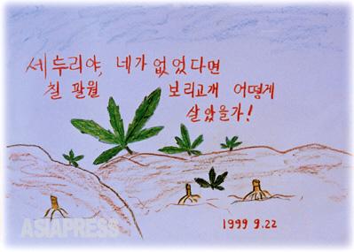 セットゥリよ、お前がなかったらどうやって生きていけただろう セットゥリは早春から晩秋まで、北朝鮮の人々がもっともたくさん食べる野草です。私たちを秋まで食べさせてくれるセットゥリに、礼を捧げます。春窮の峠を越えさせてくれたことへの感謝のしるしなのです。 ―ハンギル(キルスの兄)