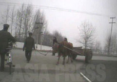牛車を引く姿は平壌の「一号道路」では絶対に見られない光景。「一号道路」ではリヤカーを引くこ とも許されない。取締りがあるため、大きな物を運ぶ時は必ず裏通りを通るのだという。