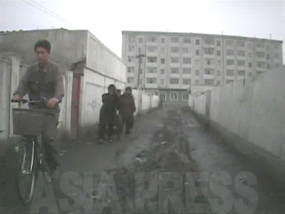 少し広めの路地に入る。舗装されておらず、リヤカーが往き交ったためか道の真ん中に轍(わだち) が幾重にもできている。