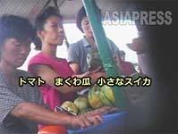 20110127_APN_pyongyang003