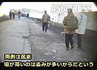 20110311pyonura_01_02
