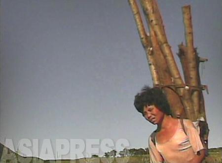 (参考写真)薪にする木を背負った女性。丸太は背丈以上の長さだ。薪を売れば商売にもなる。山から下りてきたところだ。2008年9月 黄海南道海州市郊外 撮影:沈義川(シム・ウィチョン)