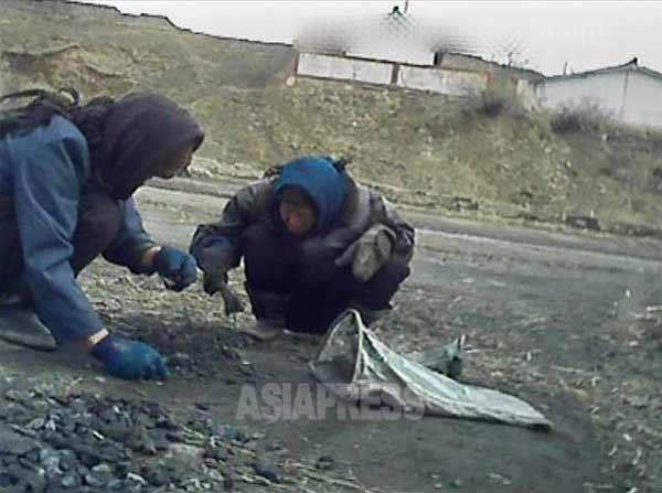 女性二人が道に転がった石炭を拾い集めている、撮影 アジアプレス