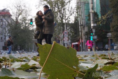 冷たい風が2人の距離を縮める。 2014年11月30日 北京 芳草地にて 撮影 宮崎紀秀