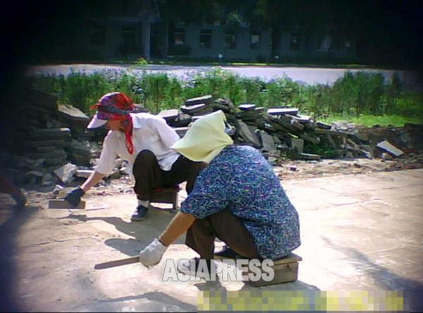 アパート街の住民らが歩道の道路舗装工事に動員されている。2011年8月、平壌市西城区域で。撮影ク・グァンホ(アジアプレス)