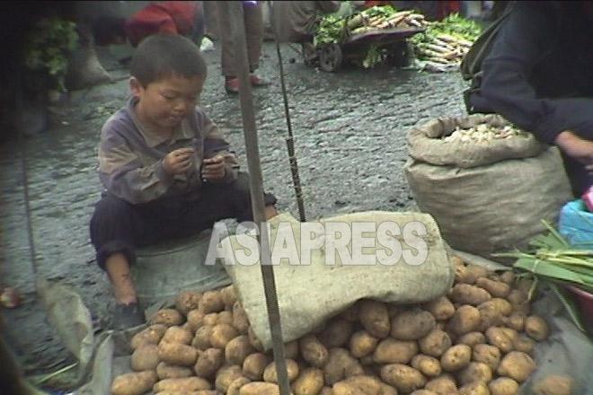 10歳にもならない幼い少年がジャガイモ売りの店番をしている。1998年10月江原道元山(ウォンサン)市で。 撮影 アン・チョル(アジアプレス)