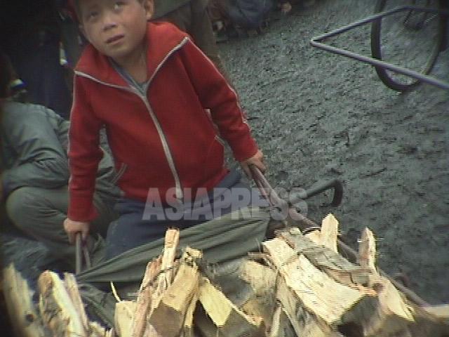 市場で薪を売る少年。撮影者が近づくと、取締りの役人だと思ったのか表情がこわばった。 1998年10月江原道元山(ウォンサン)市で。 撮影 アン・チョル(アジアプレス)