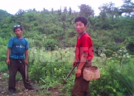 (参考写真)農民は長く政権と農場幹部の収奪にさらされ、かつ北朝鮮社会の最下層に位置付けられている。写真は平安南道の農民たち。2010年6月キム・ドンチョル撮影(アジアプレス)