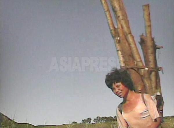重さに表情が歪めながら丸太を背負って山から下りてきた女 性。薪にして市場で売ると思われる。2008年9月黄海南道海州市郊外にてシム・ウィチョン撮影(アジアプレス)