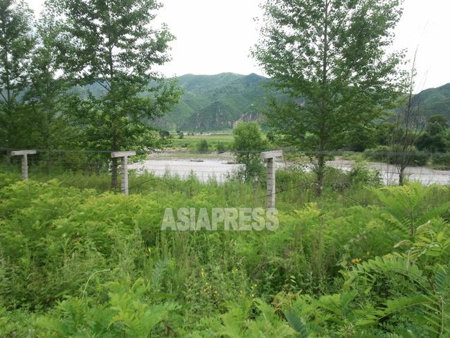 事件があったとされる会寧市の仁渓里付近。中国側から撮影した。鉄条網で覆われ越境は困難だ。2012年8月撮影アジアプレス