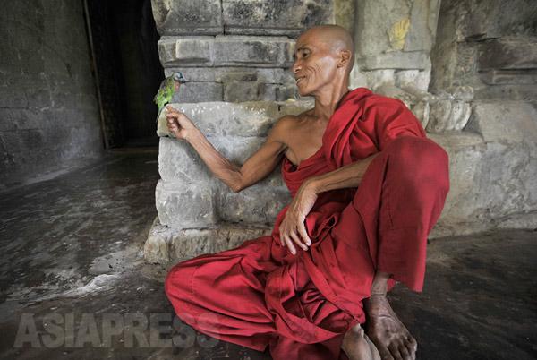ラカイン州のパゴダ(仏塔)の僧侶(2010年撮影 宇田有三)