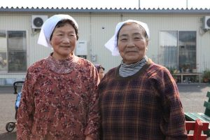 <北朝鮮写真報告>最新教科書75冊入手! 表紙に見える金正恩体制のホンネ (写真4枚)