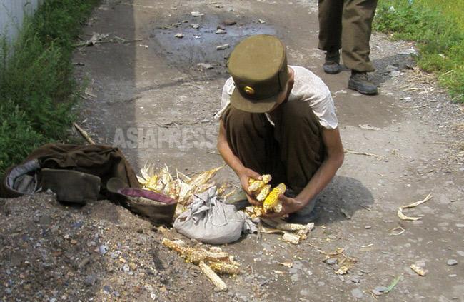 前に回る。畑から盗んできたトウモロコシの粒をこそぎ集めていた。痩せた兵士は若い。2008年8月平壌市郊外にて撮影チャン・ジョンギル(アジアプレス)