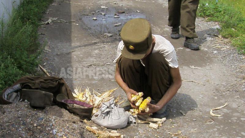 畑から盗んできたトウモロコシの粒をこそぎ集める痩せた兵士(アジアプレス)