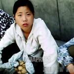 <北朝鮮> 写真特集・無料動画