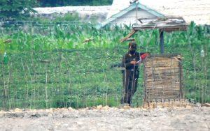 <最新写真報告>超望遠レンズが捉えた北朝鮮の今(2) 民は「檻」に閉じ込められてしまった