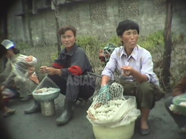 【写真特集】大飢饉時代の女性たち(2)