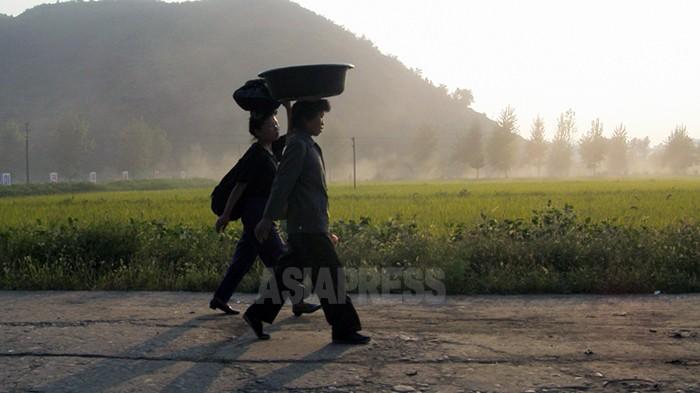 【写真特集】困窮する農村の姿(5)