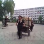 리어카는 중요한 생산수단. 있는 힘껏 짐을 운반하는 여성은 이제 드물지 않다 (2010년6월 평성시 김동철 촬영)