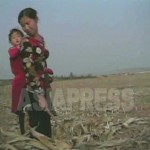 수확이 끝난 옥수수농장에서 이삭을 줍는 여성. 2008년 10월 촬영 : 심의천 기자 (C)아시아프레스