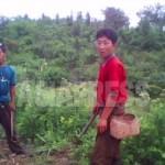 (참고사진) 옥수수 농장에서 일하는 농민들. 옥수수 사이에 콩을 심고 있는 중이라고 한다. 올해 분배(배급)를 받았느냐는 기자의 질문에 '주고 싶어도 작물이 없어 주지 않습니다'라고 대답했다. 2010년 6월 평안남도. 촬영 : 김동철 (아시아프레스)
