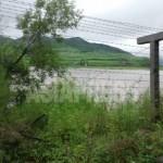(참고 사진)새로 설치된 철조망. 두만강 하류의 훈춘시에서 2013년 7월 31일 촬영. 강 건너편은 함경북도 새별군으로 생각된다. 촬영: 박영민 (아시아 프레스)