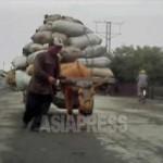 많은 짐을 실은 우마차. 2012년 9월 평안북도 신의주