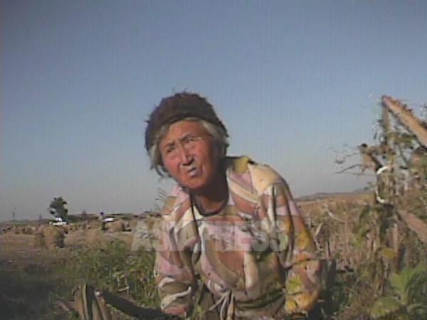 <북한내부> 마침내 일부 농촌에서 기아 발생... '절량 세대' 증가로 당국 당황