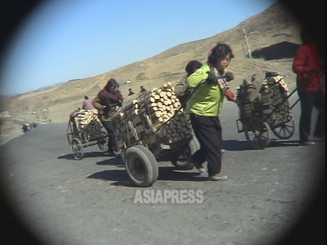 Women from rural areas cart wood harvested in the mountains to cities. April 2005 (ASIA PRESS)