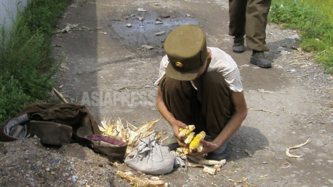 Emaciated soldier gleans corn grains which he stole at a corn field. (ASIA PRESS)